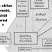 3 hasznos ábra a hastánc stílusairól, főleg a törzsi / fúziós stílusokról